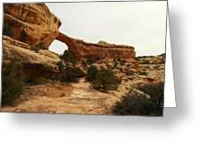Natural Bridge Southern Utah Greeting Card by Jeff Swan