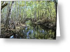 Natural Bridge Springs Greeting Card