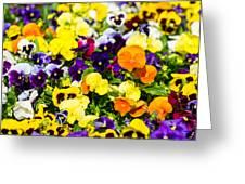 Natural Carpet - Featured 3 Greeting Card by Alexander Senin