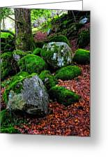 Natural Emeralds. Wicklow. Ireland Greeting Card