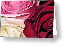 Natural Roses Greeting Card