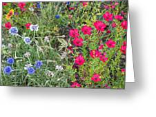 Cedar Park Texas Natural Tapestry Greeting Card