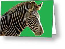 Natural Zebra Greeting Card