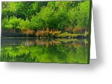 Naturally Reflected Greeting Card