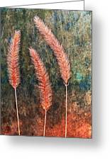 Nature Abstract 15 Greeting Card
