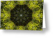 Caleidoscope - Green Leaves Greeting Card