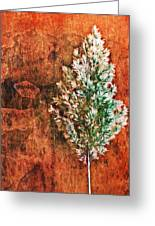 Nature Abstract 48 Greeting Card