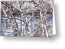 Nature And Texture Greeting Card