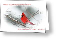 Nature Brings Greeting Card
