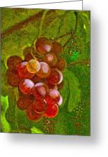 Nature Goodness Grapes On The Vine Greeting Card