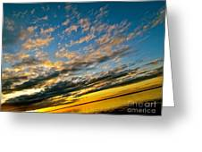 Nature Grasping Greeting Card by Q's House of Art ArtandFinePhotography