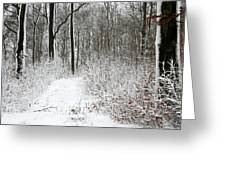 Nature In Winter Under Snow  Greeting Card