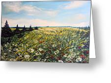 Nature Landscape Field Poppies Daises Grass Pines Original Art  Greeting Card by Drinka Mercep