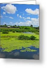 Nature Paradise Greeting Card