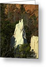 Nature Perfect Carving Greeting Card