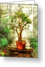 Nature - Plant - Tree Of Life  Greeting Card by Mike Savad
