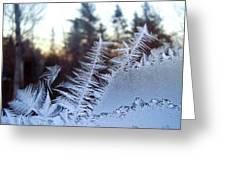 Nature Repeats Itself Greeting Card
