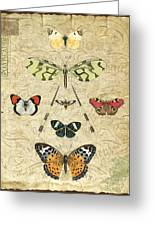 Nature Study-no.2 Greeting Card