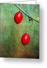 Nature's Baubles Greeting Card