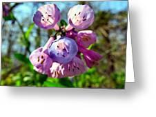 Natures Bells Greeting Card