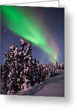 Nature's Canvas In The Northern Sky Greeting Card by Mike Berenson