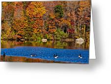 Natures Colorful Autumn Greeting Card