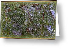 Natures Crystals Greeting Card
