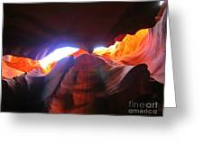 Natures Flare For Art Greeting Card
