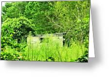 Natures Green Greeting Card