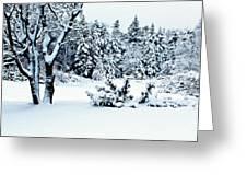 Natures Handywork - Snow Storm - Snow - Trees 2 Greeting Card