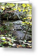 Nature's Mossy Boulders Greeting Card