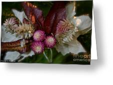 Nature's Ornament Greeting Card