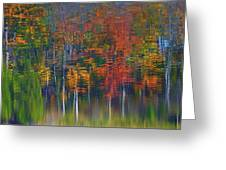 Nature's Paint Brush Greeting Card