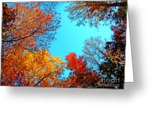Nature's Pallete 1 Greeting Card