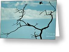Nature's Perch Greeting Card