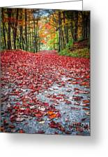 Nature's Red Carpet Greeting Card