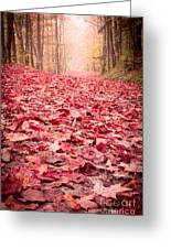 Nature's Red Carpet Revisited Greeting Card by Edward Fielding