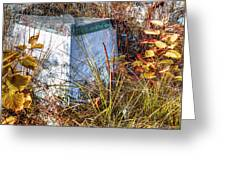 Nature's Storage Greeting Card