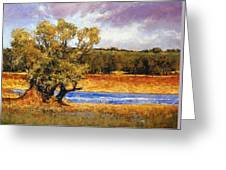 Nature's Trail - Ridgefield Greeting Card