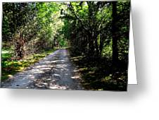 Nature's Trail Greeting Card