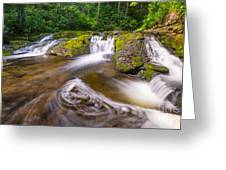 Nature's Water Slide Greeting Card