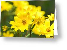Natures Yellow Greeting Card
