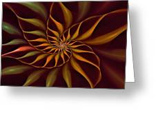 Nautilus Fractalus Tropical Greeting Card