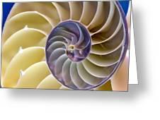 Nautilus Side View Greeting Card