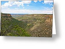 Navajo Canyon Overlook On Chapin Mesa Top Loop Road In Mesa Verde National Park-colorado Greeting Card