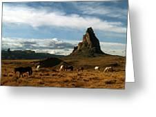 Navajo Horses At El Capitan Greeting Card