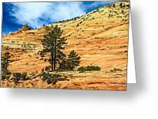 Navajo Sandstone Greeting Card