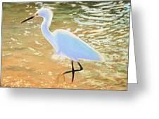 Navigating The Tide Greeting Card