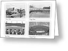 Navin Field Briggs Tiger Stadium Comerica Park Greeting Card