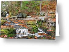 Near And Far Greeting Card by Bill Wakeley